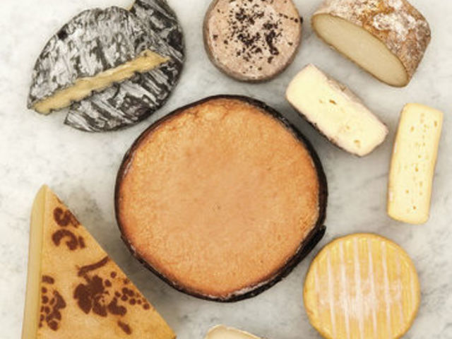 The picture shows several kinds of cheese.