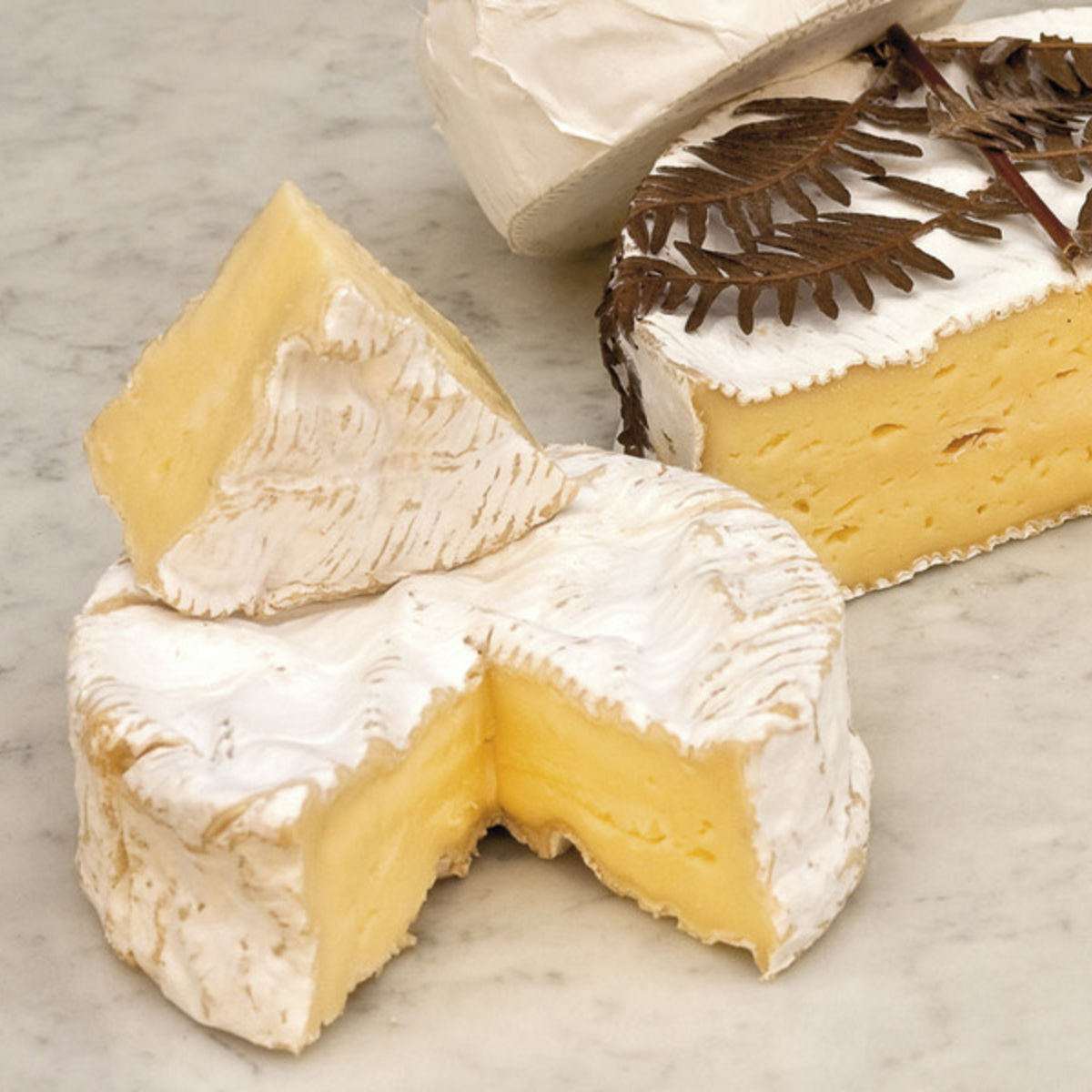 The picture shows several kinds of soft cheese.