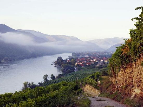 A picture shows the Wineregion Wachau