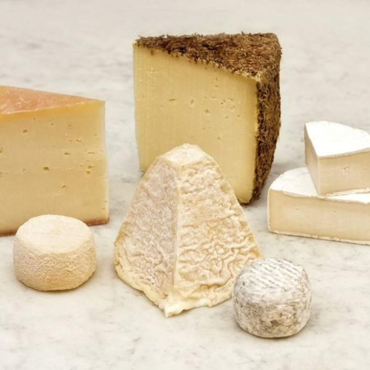 The picture shows several kinds of goat and sheep cheese.