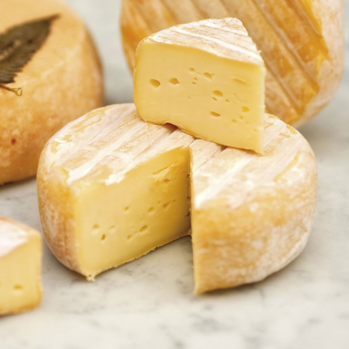 The picture shows several kinds of soft cheese